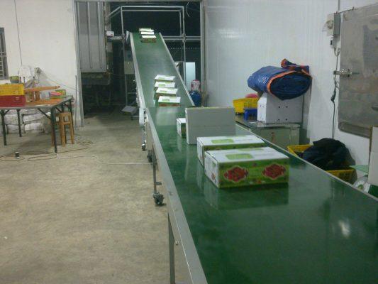 Thông tin tổng quan về băng tải PVC nâng hạ